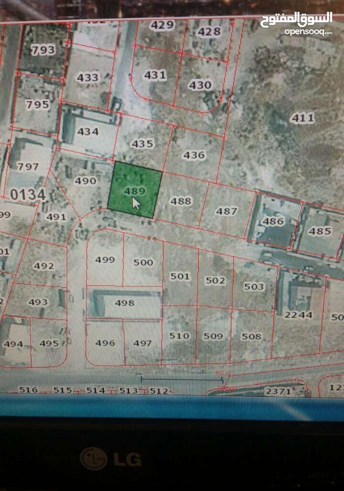 رقم القطعة 489 حوض 1 قصير السهل الجويدة من اراضي جنوب عمان