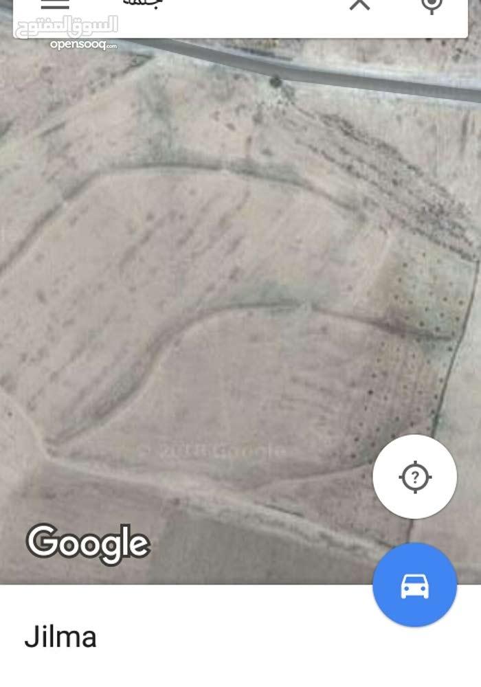 ارض فلاحية 11هكتار