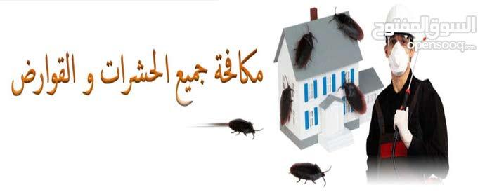 المتحده لخدمات مكافحة الحشرات والتنظيف افضل شركه تنظيف الفيلال الشقق والكنب والس