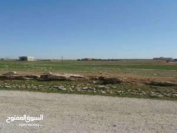 قطعة أرض على طريق المطار للبيع في منطقة القليب بالقرب من مشاريع نقابة المهندسين اللبن