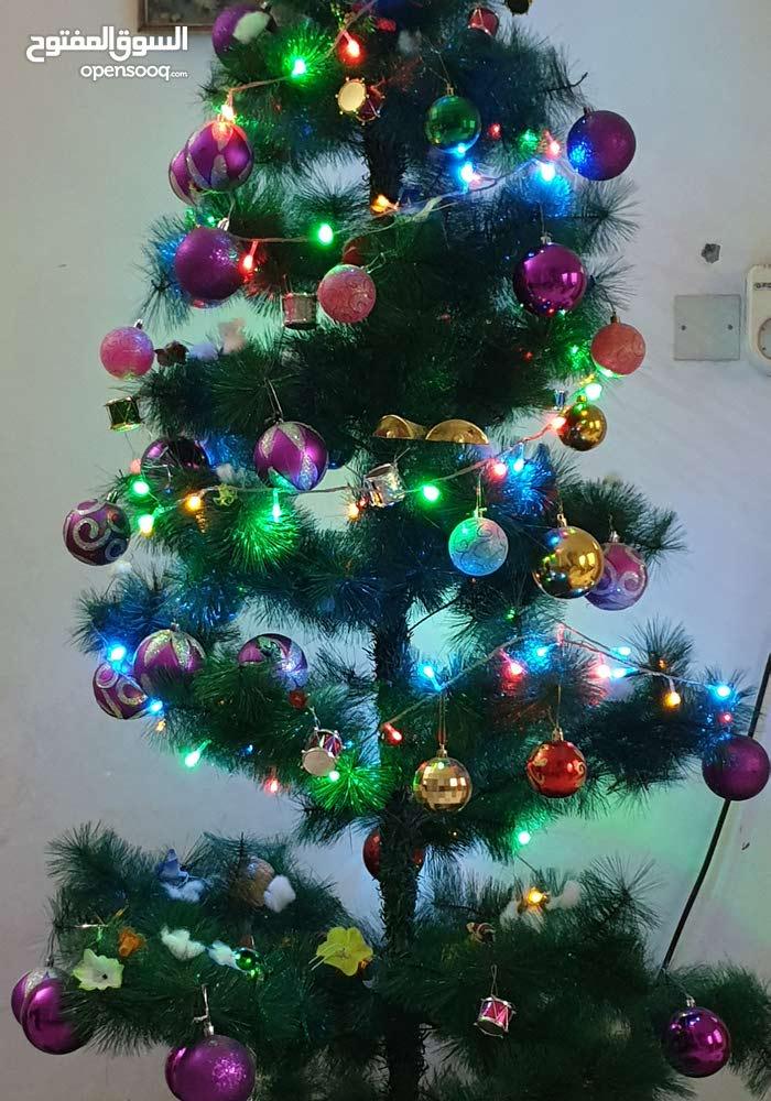 شجرة أعياد الميلاد