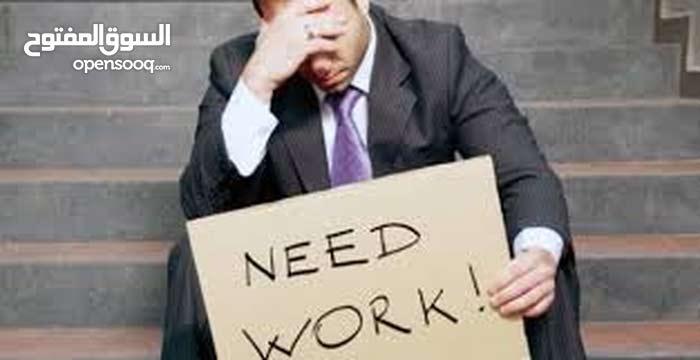 البحث عن عمل