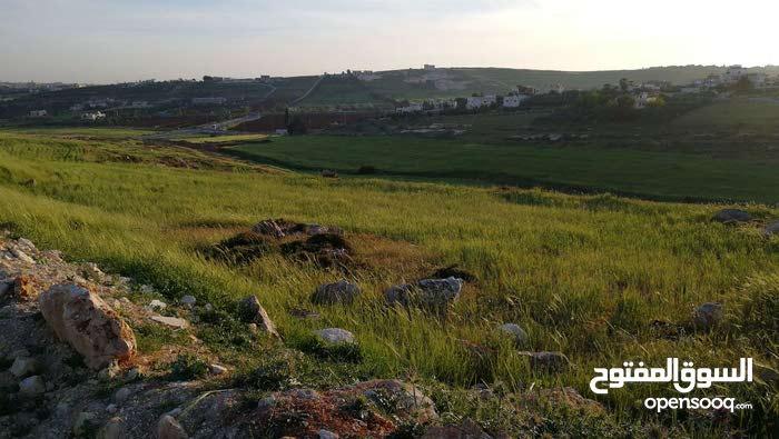 أرض صخرية مطلة قرية سالم اسكان المالية ضاحية الأميرة ايمان