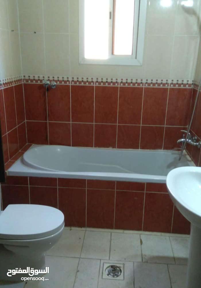 شقة غرفة وصالة وحمام ومطبخ للايجار بسعر ممتاز في عين خالد