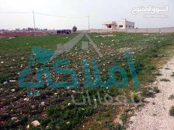 قطعة ارض في طريق المطار مقابل جامعة الاسراء ( اللبن - الذهيبة ) للبيع