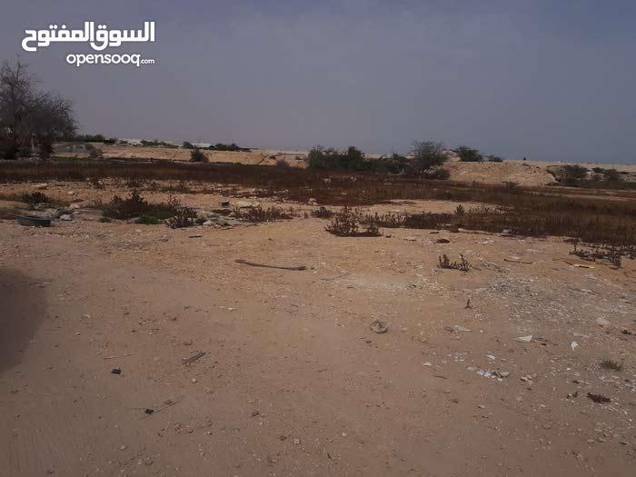 للايجار ارض فضاء في ام عبيريه land for rent in um abirya