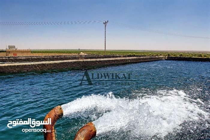 ارض تصلح لمشروع استثماري  للبيع في منطقة المفرق , مساحة الارض 340 دونم
