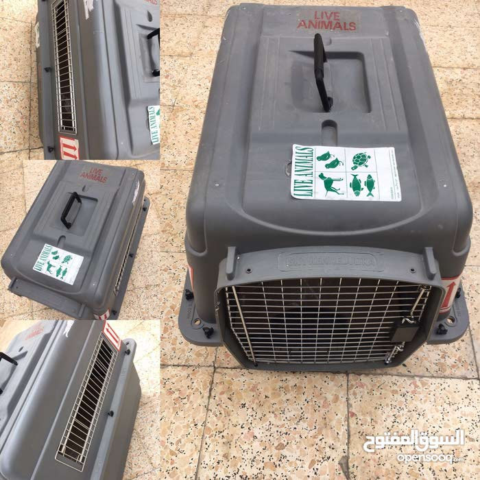 Sky Kennel Dog and Cat Cage