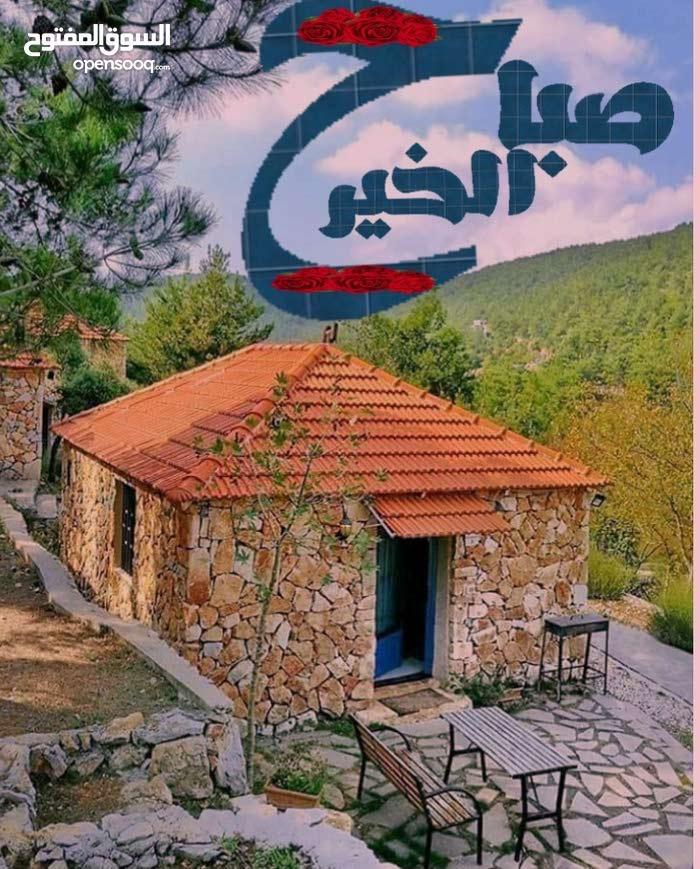شقة نظيفة للبيع بيروت مساحة 130م ط 1 مع سند صالون وسفرة 2بلكون 2حمام 2 نوم بئر