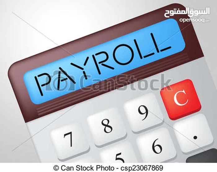 Financial Accountant محاسب مالي خبرة + خبرة في المنظومات المحاسبية والاكسل