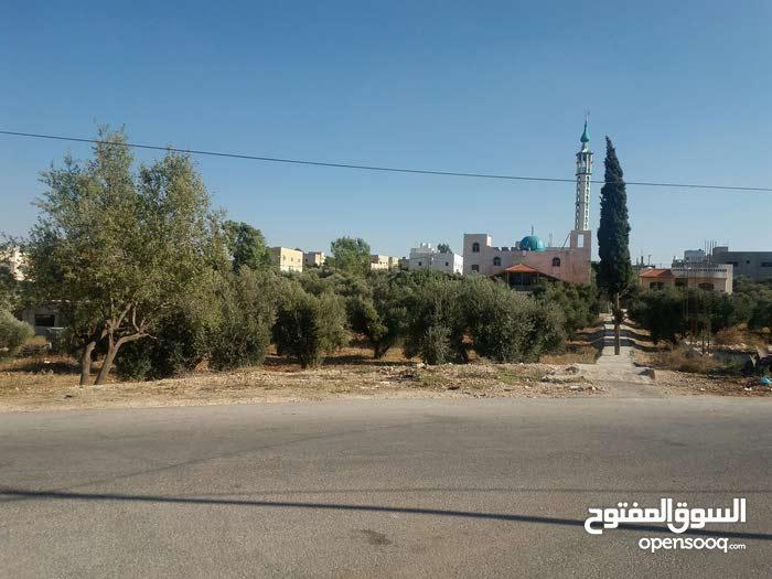 ارض في قرية علعال / قصبة إربد
