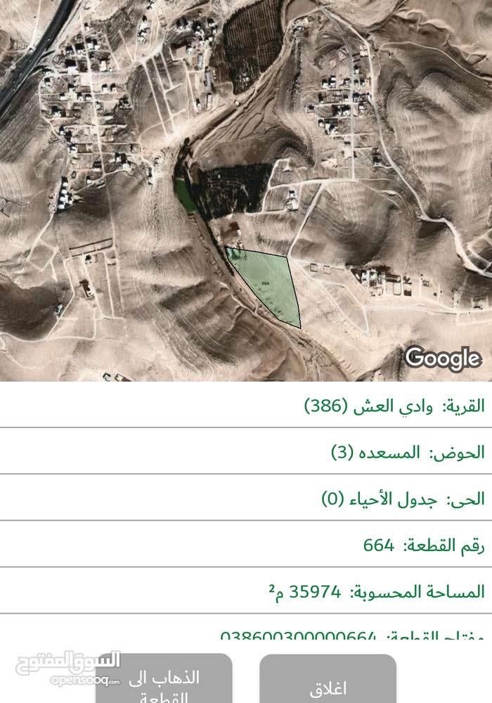 ارض للبيع في وادي العش 895 م. قريبه على الشارع وحوليها سكن الارض مشاع