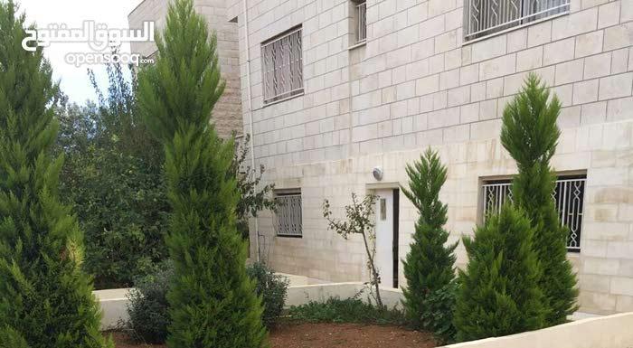 شقة ارضية مفروشة للايجار في الجبيهة
