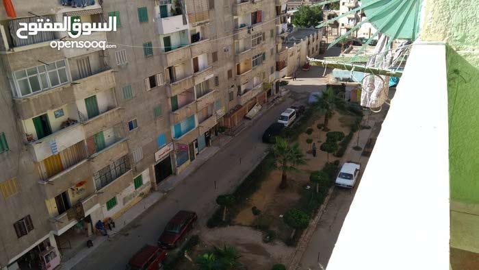 apartment More than 5 in Alexandria for sale - Mandara