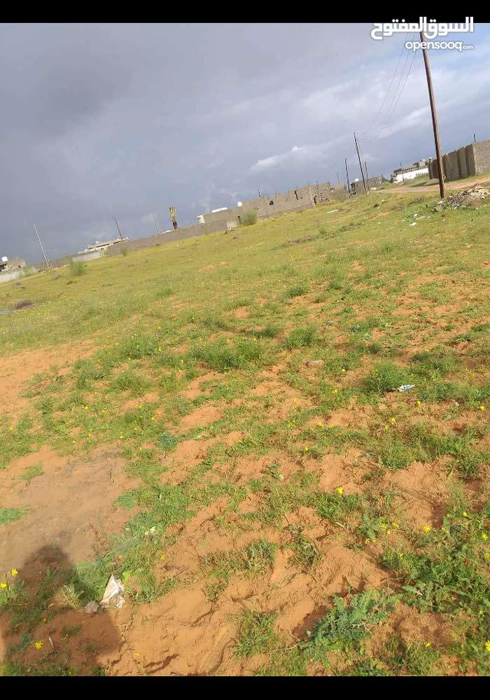 قطعة ارض للبيع في بير التوته مساحتها800 م