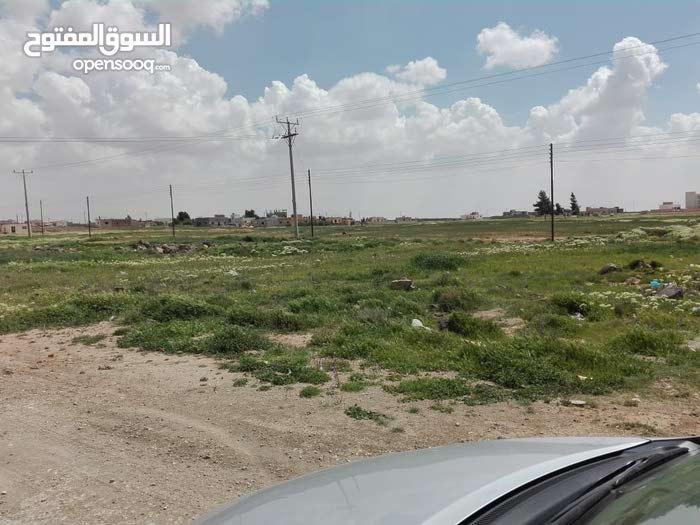 أرض سكنية للبيع في محافظة المفرق الخضراء  القرية البستانة بأسعار مميزة