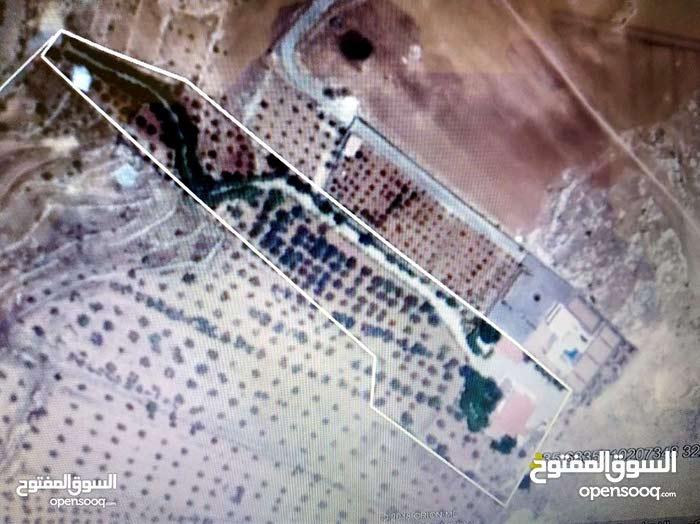 السلط-المغاريب مزرعه وفيلا 13 دونم للبيع البناء 830م
