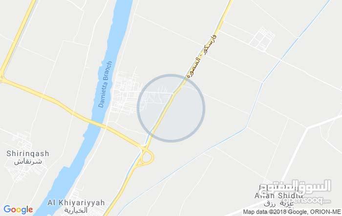 100 فدان على طريق دمياط المنصوره مكان حيوي