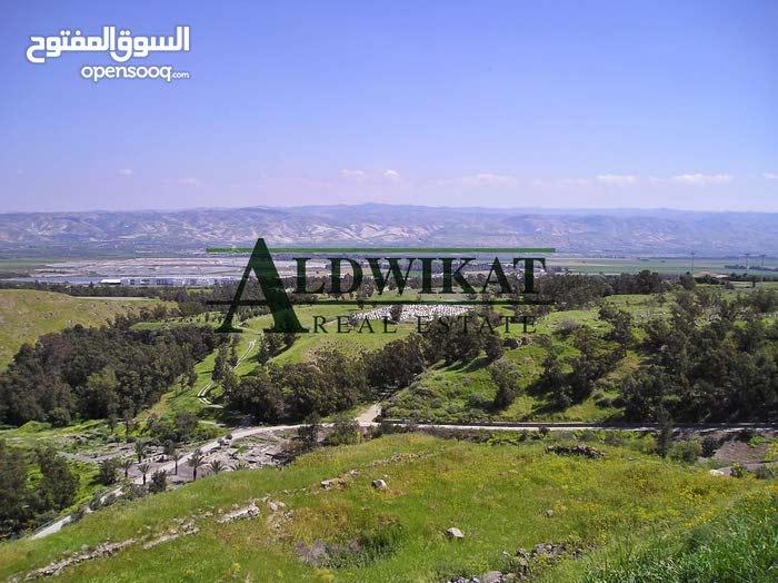 اراضي للبيع في الاردن - عمان - الشونة الجنوبية , مساحة الارض 800م  ذات موقع مميز