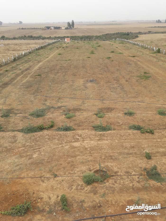 أرض للبيع مساحتها هكتار موقع ممتاز بين بن سليمان بوزنيقة