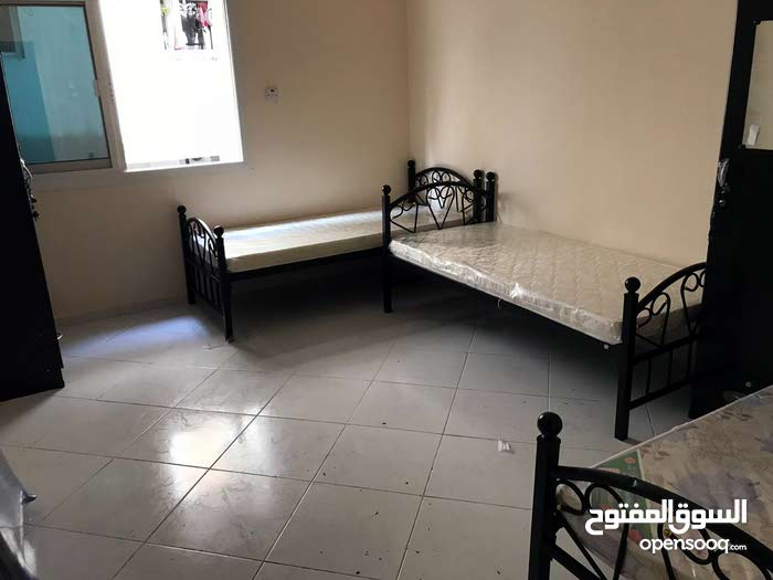 Brand new Fully Furnished Bed Spaces/ Room in Burjuman Metro near Karama  for executive bachelors
