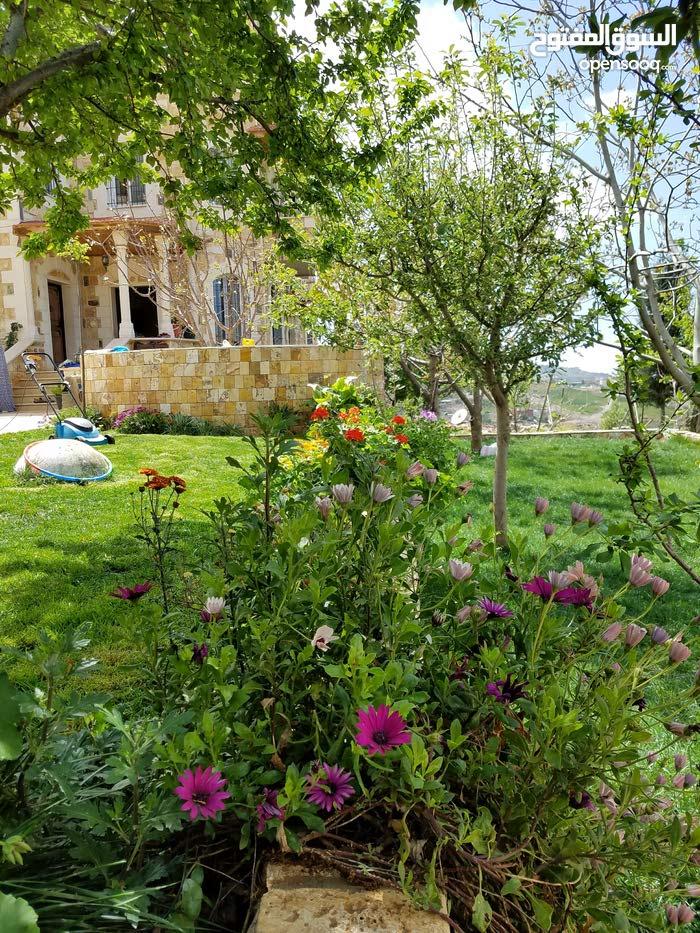 فيلا شبه قصر في أعلى قمم عجلون مطله على القدس