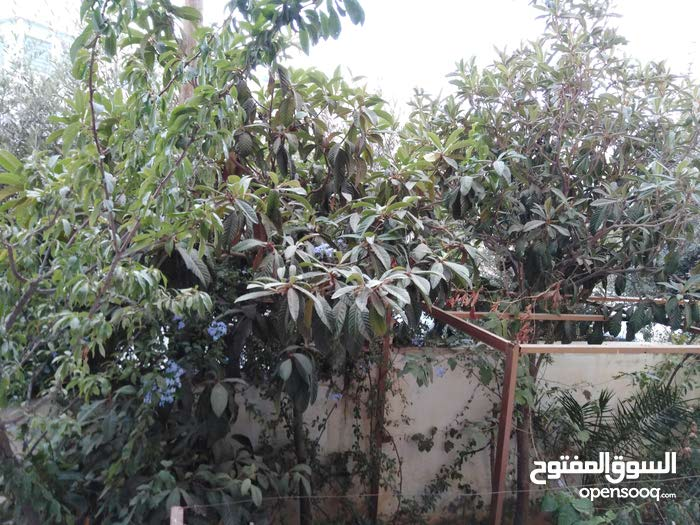 Marj El Hamam neighborhood Amman city - 143 sqm apartment for sale
