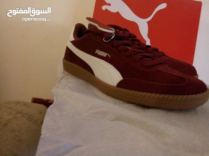f94e5e865 New Puma Shoes size 8 ( 40.5 ) - (105950480) | السوق المفتوح