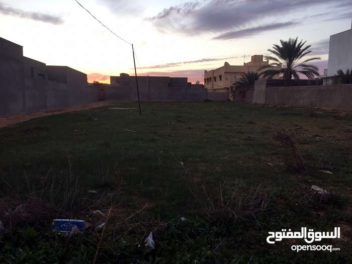 قطعة بالقرب من الفصول الاربعه شارع المدرسة ومسجد عمر بن العاص
