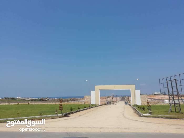 مقسم نسمة للبيع أراضي علي البحر