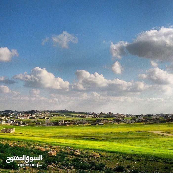 عمان (العبدلية ) قرب ابو علندا