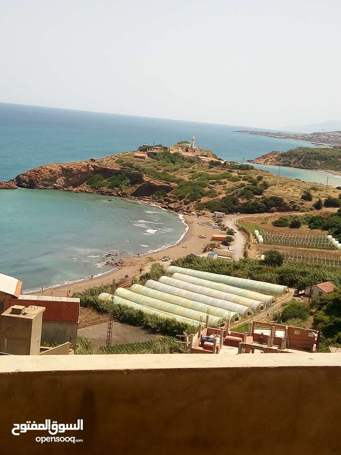 حي سيدي براهيم بلدية قوراية ولاية تيبازة