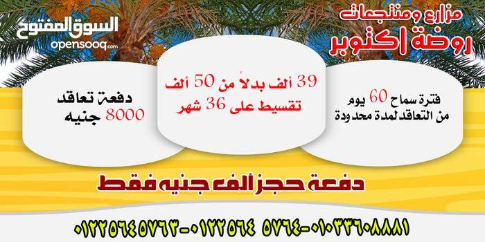 عرض ذهبى لمزارع روضة اكتوبر -39000 بدل 50الف