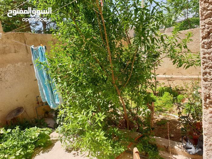 شقة 133م للبيع - جبل التاج شارع عمر المختار