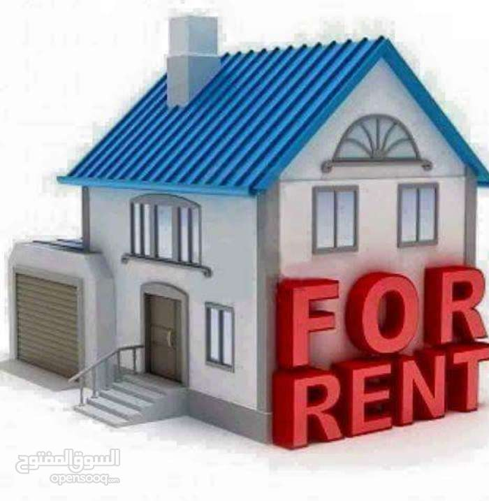 More than 5 apartment for rent - Tourist Club Area