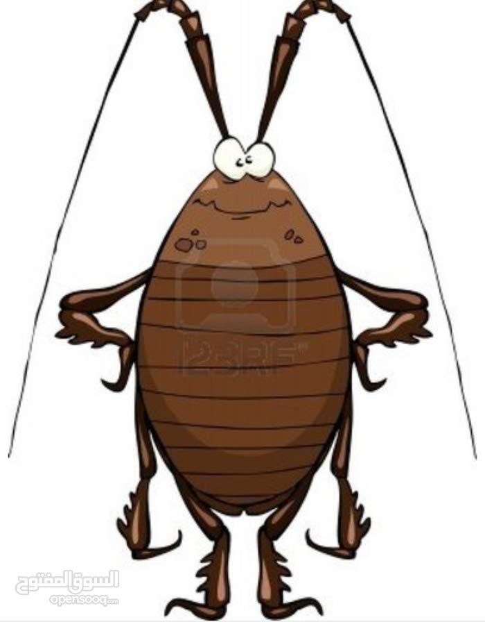 مزيل للصراصير سريعه التكاثر في المنازل والمكاتب . مزيل فعال ومضمون