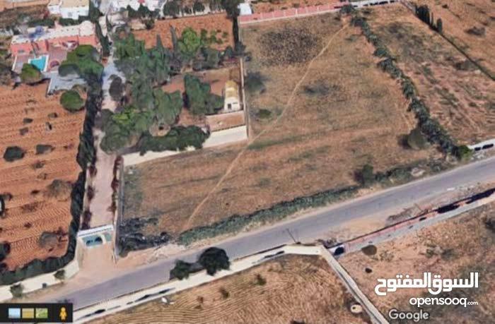 ارض 5900م للبيع طريق منزل شاكر كلم 8