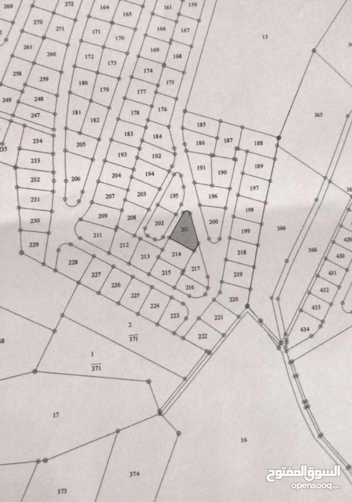 ارض للبيع في ام الدنانير