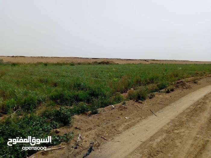 اشترى قطعة أرض 30 فدان على طريق العياط الاقليمي الجديد