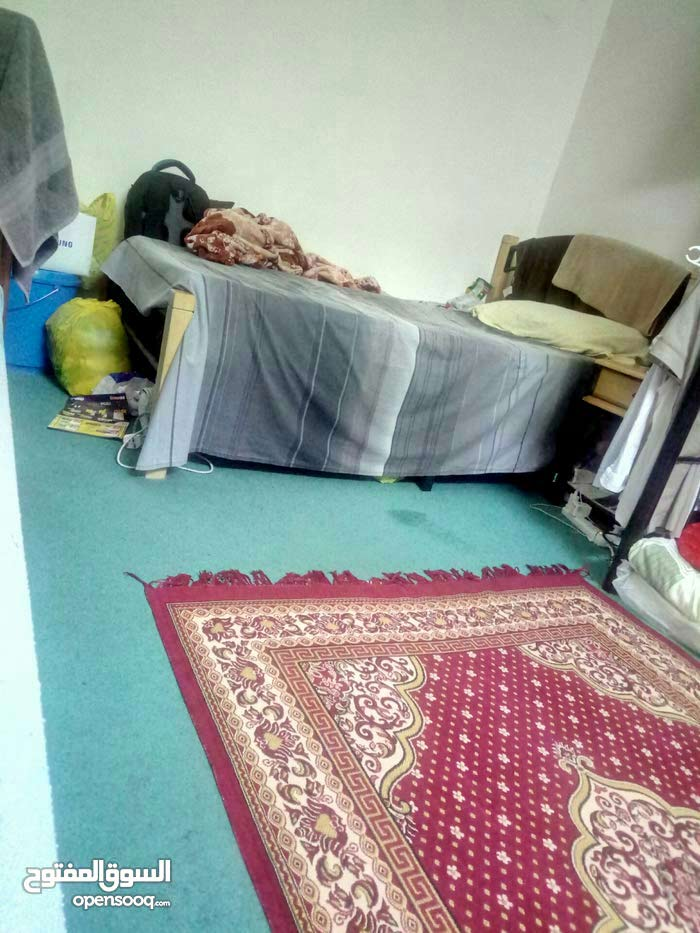 bed space available - TCA Abu Dhabi