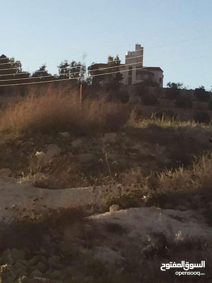 قطعة ارض 500 متر للبيع في شفا بدران زينات الربوع حوض المكمان