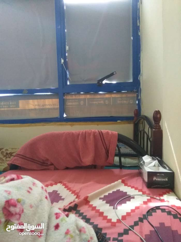 Sharing room available in shabia 12 only 625aed.single bed