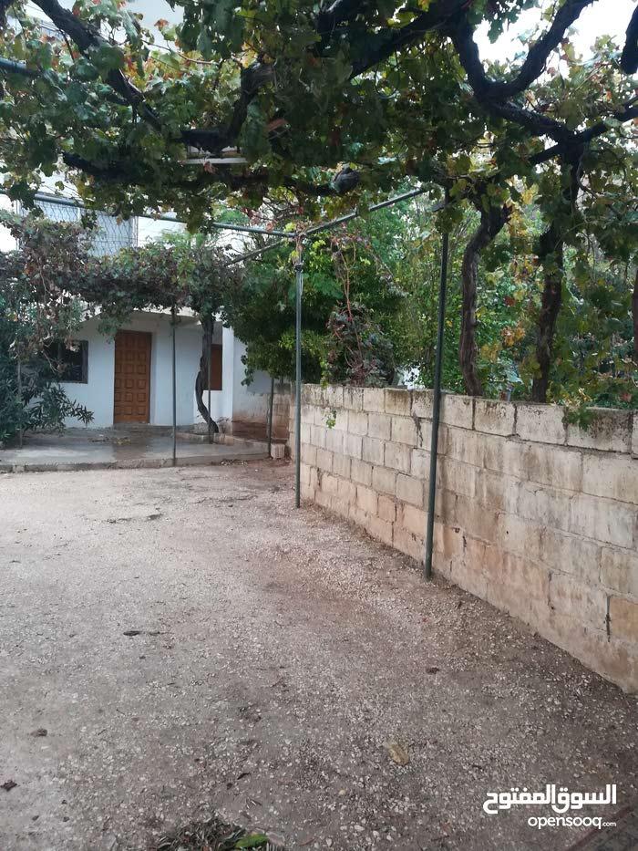 apartment for rent in IrbidKofor Youba
