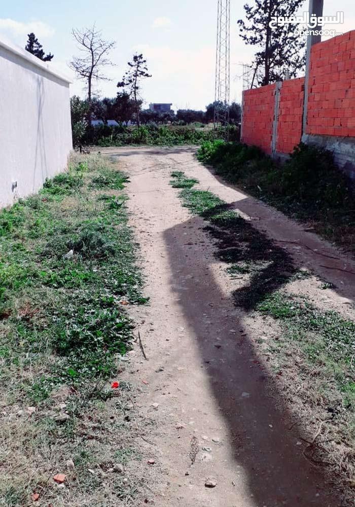فرصة أرض للبيع بالحمامات