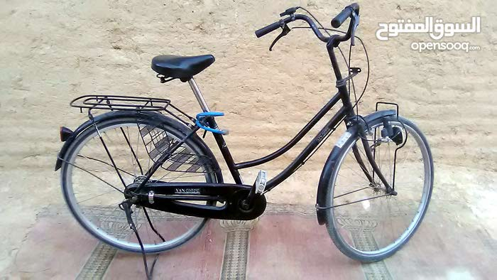 BIG CYCLE FOR ADULTS
