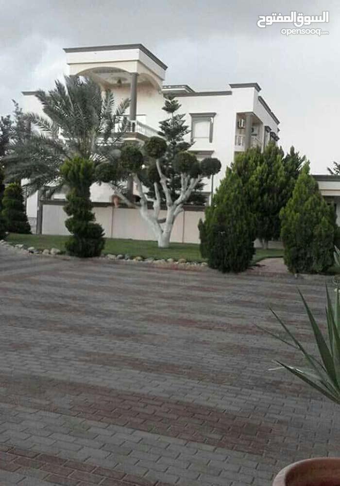 قصر للبيع في خلة الفرجان