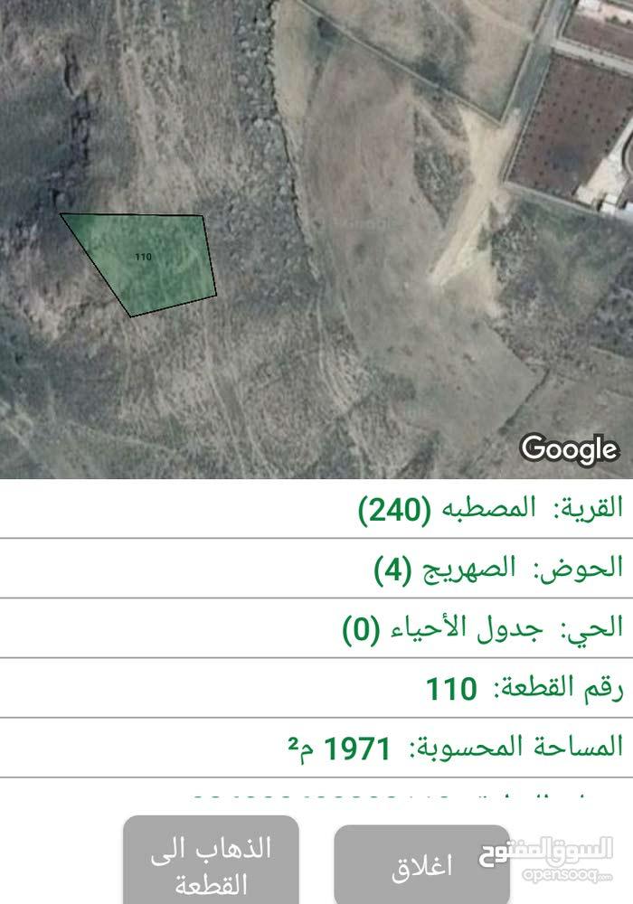 2 دونم ب 25000 تصلح مزرعة ابقار