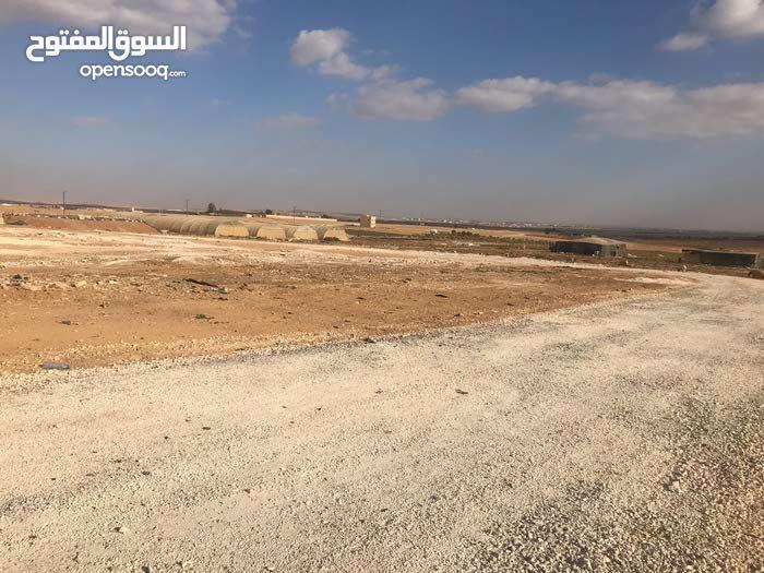 ارض سكن ج للبيع خلف جامعة الإسراء