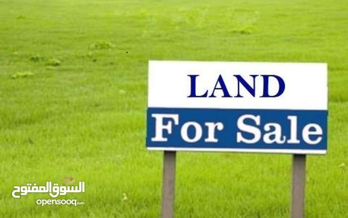أرض سكنية للبيع في أم رمانة خلف الشويفات