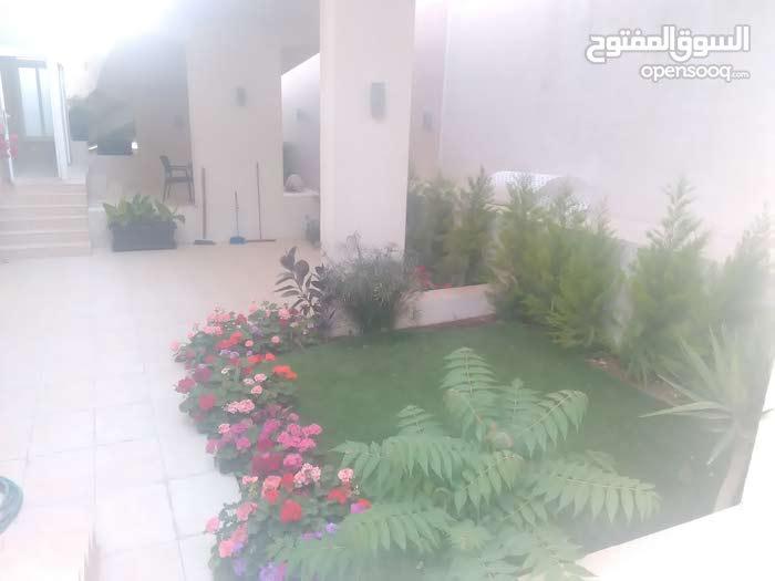 شقة شبه ارضي فارغة للايجار - عبدون